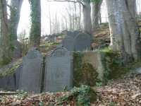 Graves in the woods (c) Treftadaeth Llandre Heritage