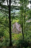 Church from the trees (c) Countryscape