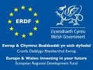 Europe and Wales: Investing in your future. European Regional Development Fund